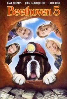 Beethoven 5: El perro buscatesoros online gratis