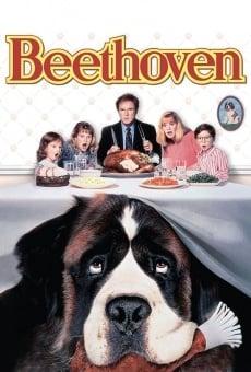 Beethoven, uno más de la familia online gratis