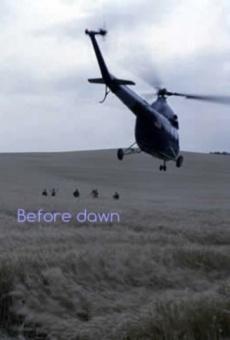 Ver película Before Dawn