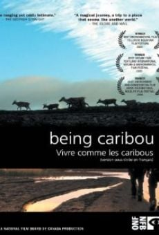 Being Caribou on-line gratuito