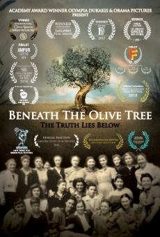 Ver película Beneath the Olive Tree