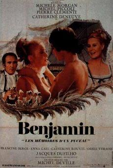 Ver película Benjamin, diario de un joven inocente