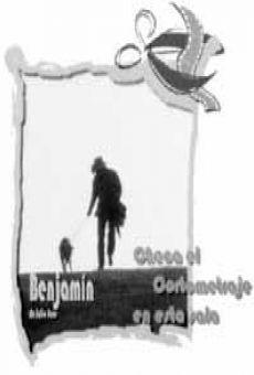 Ver película Benjamín