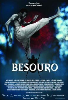 Ver película Besouro