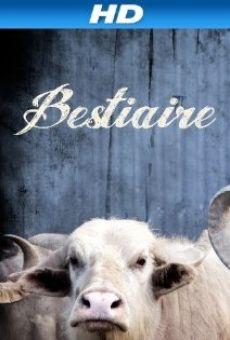 Ver película Bestiaire