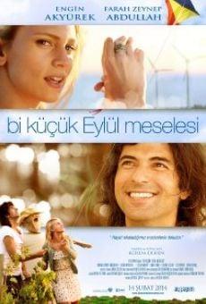 Ver película Bi Küçük Eylül Meselesi