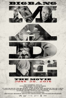 Big Bang Made the Movie