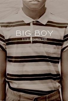 Ver película Big Boy