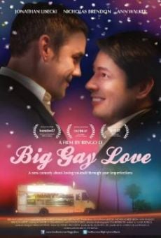 Ver película Big Gay Love
