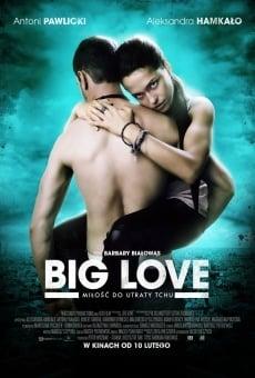 Big Love online