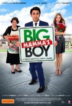 Ver película Big Mamma's Boy
