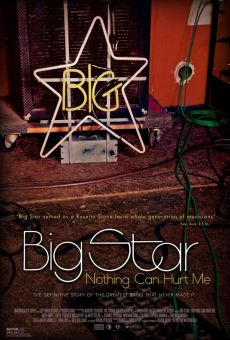 Ver película Big Star: Nothing Can Hurt Me