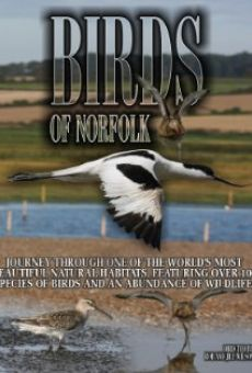 Birds of Norfolk: A Bird Watchers Dream on-line gratuito