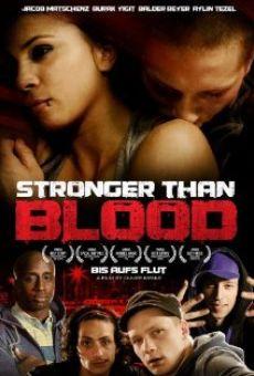 Ver película Bis aufs Blut - Brüder auf Bewährung