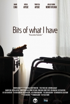 Ver película Bits of What I Have
