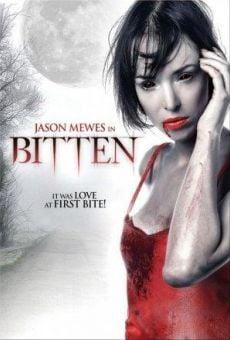 Ver película Bitten, amor entre vampiros