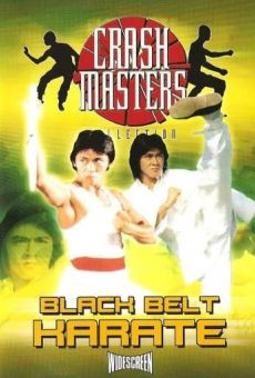 Black Belt Karate online gratis