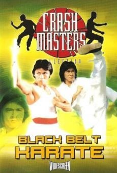 Ver película Black Belt Karate