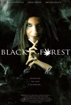 Black Forest: Hansel and Gretel & the 420 Witch online
