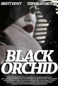 Ver película Black Orchid