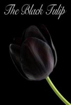 Ver película Black Tulip
