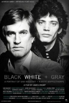 Black White + Gray: A Portrait of Sam Wagstaff and Robert Mapplethorpe on-line gratuito