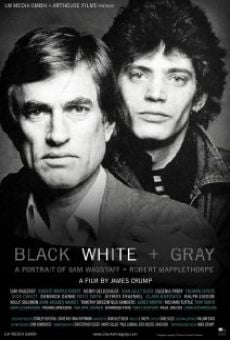 Black White + Gray: A Portrait of Sam Wagstaff and Robert Mapplethorpe online