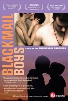 Ver película Blackmail Boys