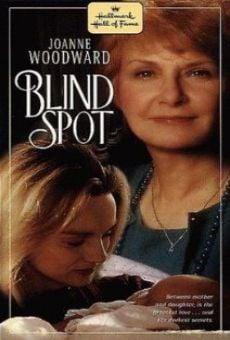 Ver película Blind Spot