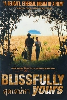 Ver película Blissfully Yours