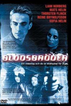 Ver película Bloodbrothers