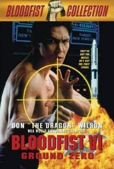 Ver película Bloodfist 6: Alerta Zero
