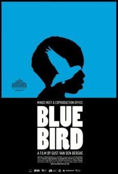 Ver película Blue Bird