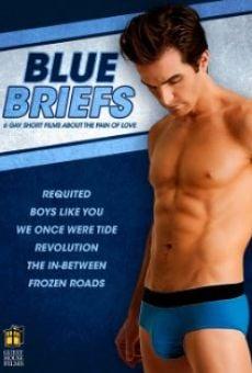 Blue Briefs en ligne gratuit