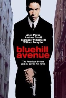 Blue Hill Avenue online