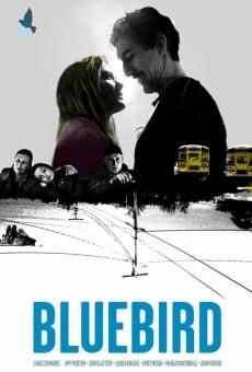 Ver película Bluebird