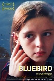Bluebird gratis