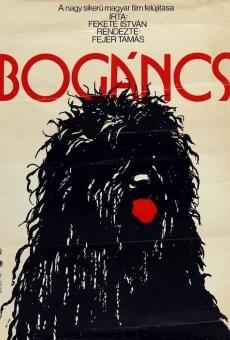 Ver película Bogáncs