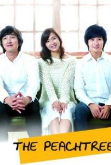 Watch Bok-sung-a-na-mu online stream
