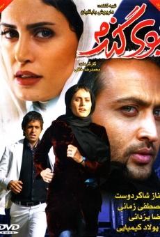 Ver película Booye Gandom
