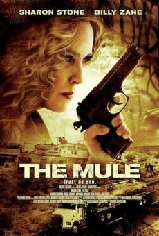 Border Run (The Mule) on-line gratuito
