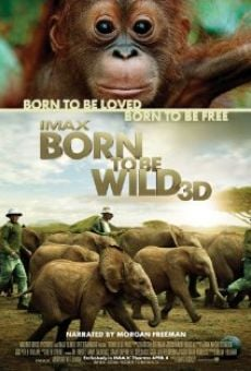 Ver película Born to Be Wild