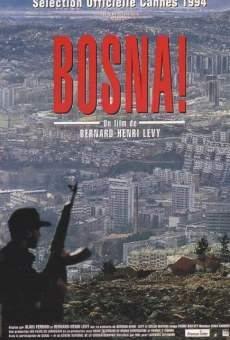 Ver película Bosna!