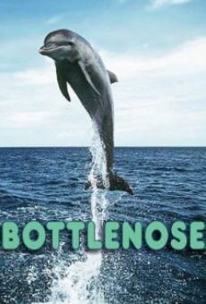 Bottlenose on-line gratuito