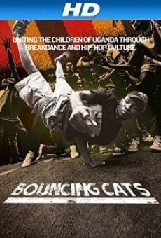 Ver película Bouncing Cats