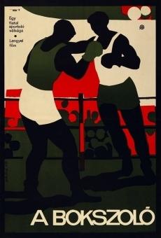 Ver película Boxer