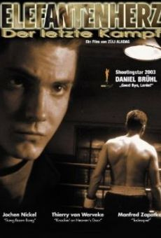 Ver película Boxing