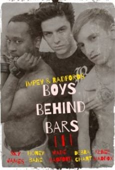 Boys Behind Bars 3 online