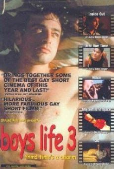 Ver película Boys Life 3