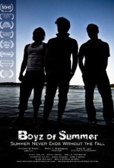 Ver película Boyz of Summer